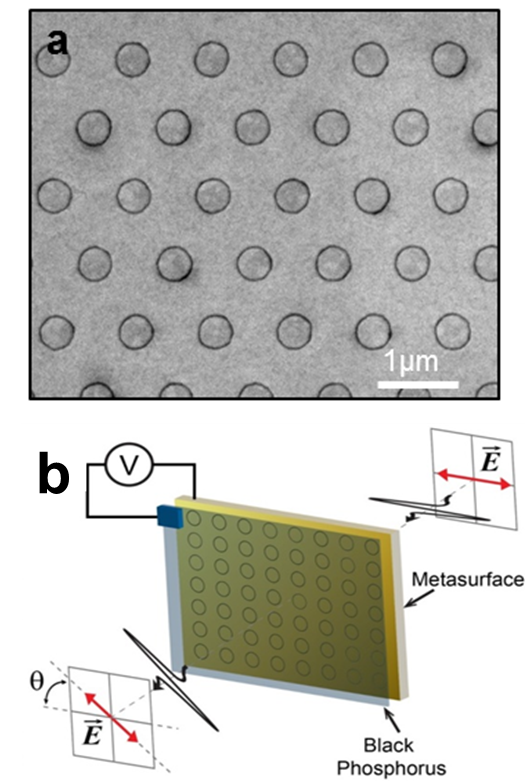 Polarization control and conversion with anisotropic black phosphorus metasurfaces