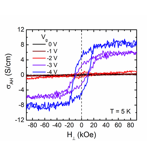 Giant Electrical Modulation of Magnetism in Complex Oxides