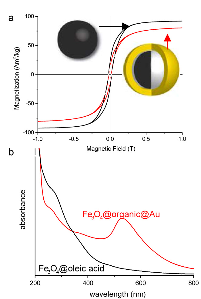 Hysteresis loops (4K) and UV-visible spectra of the Fe3O4@oleic acid precursor and Fe3O4@organic@Au.